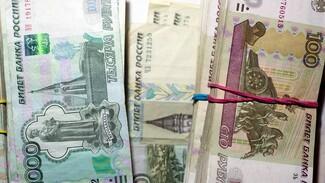 Мэрия Воронежа возьмёт ещё 650 млн в кредит