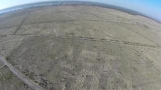 Воронежский «Лес Победы» видно из космоса