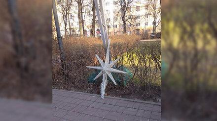 В сквере в центре Воронежа упала звезда