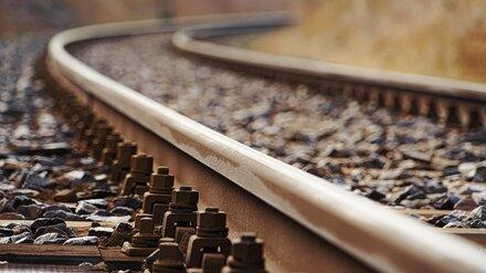 В Воронежской области чудом выжили сбитые поездом двое взрослых и ребёнок