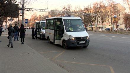 Воронежские маршрутки потеряли 82% пассажиров