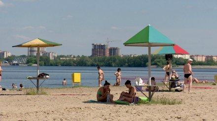 Санврачи насчитали 16 опасных пляжей в Воронежской области