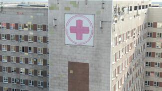 От ковида в Воронежской области скончались ещё семьчеловек