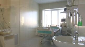За шесть дней мая коронавирусом заболели 895 воронежцев