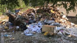 В Воронеже около школы образовалась свалка со строительным мусором