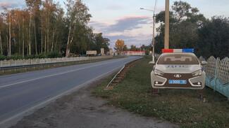 В Воронежской области установили первый фальшивый экипаж ДПС с мигалкой
