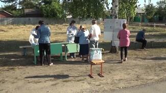 В роддоме и «на пеньке». Как в Воронежской области прошло трёхдневное голосование