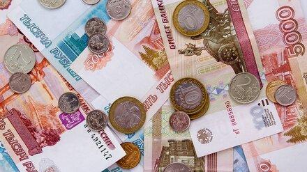 Воронежцам рассказали, как грамотно выбрать микрофинансовую организацию