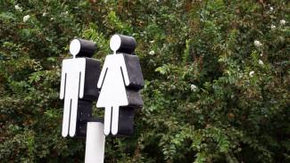 В Воронеже установят 24 новых общественных туалета