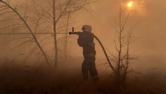К тушению огня на окраине Воронежа привлекли пожарный поезд