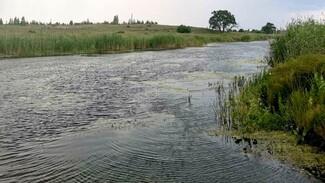 Воронежцы сообщили о найденном в пруду трупе с кирпичами на ногах