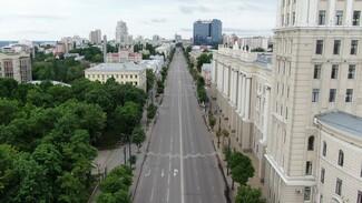 Воронежские чиновники нашли экран для уличного кинотеатра на проспекте Революции
