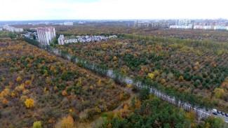 Самая большая школа страны и спорткомплекс. Воронежцы одобрили застройку яблоневого сада