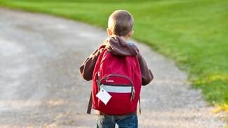 Более 300 воронежских школьников с температурой отстранили от уроков
