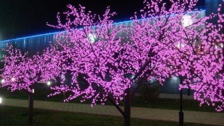 На улице Степана Разина в Воронеже установят 12 светящихся деревьев