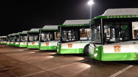 Большие низкопольные автобусы выйдут на улицы Воронежа 1 декабря
