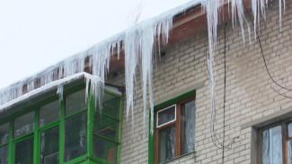 «Кто спалил адрес?» Мэр Воронежа неожиданно устроил рейд по заваленным снегом дворам