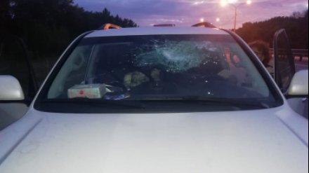 В Воронежской области подростки закидали камнями проезжавшие автомобили