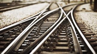 Трамвай и железнодорожная магистраль. Для воронежцев создадут новые виды транспорта