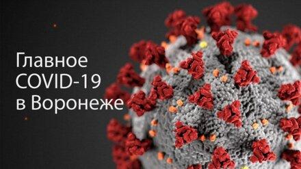 Воронеж. Коронавирус. 24 сентября