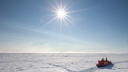 Четверо воронежских школьников отправятся в экспедицию на Северный полюс