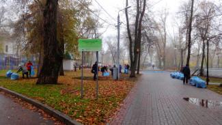 Старинное кладбище у цирка в Воронеже защитили от застройки
