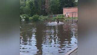 В Воронеже дети искупались в образовавшейся после дождя огромной луже