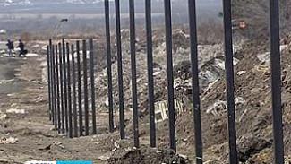 На Антонова-Овсеенко, где было вырублено более тысячи деревьев, появился подозрительный забор
