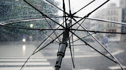 Жителей Воронежской области предупредили о ливнях и сильном ветре