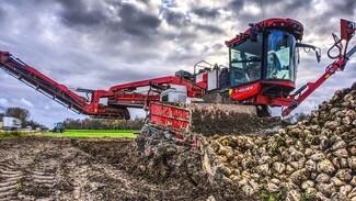 Холдинг «Продимекс» убрал на своих полях в Воронежской области 95% сахарной свёклы