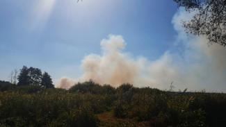 Воронежцы: в Боровом разгорелся крупный ландшафтный пожар