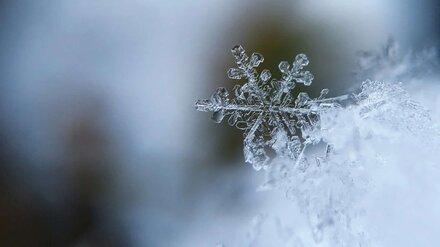 Метеорологи пообещали снежные выходные в Воронежской области