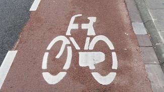 У мэра Воронежа попросили деньги на велодорожки и велопрокат