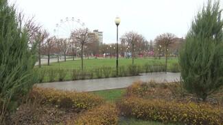 Воронежцам предложили выбрать общественные пространства для благоустройства