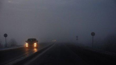Метеорологи: Воронежскую область вновь накроет опасный туман