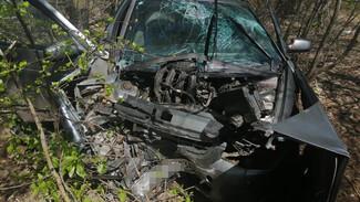 В Воронежской области ВАЗ влетел в дерево: пострадали двое взрослых и 2-месячная девочка