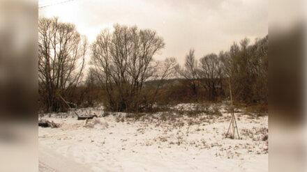 Под Воронежем пропавшего в январе мужчину нашли в камышах убитым