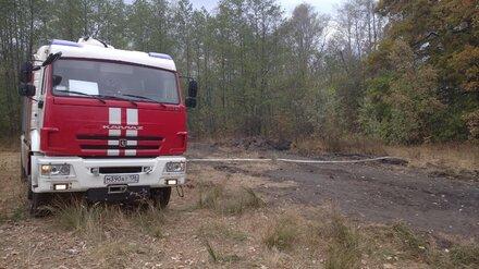 В Воронежской области потушили ландшафтный пожар на 130 га