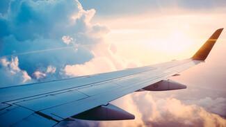 Без еды и лишнего багажа. Что нужно знать воронежцам о полётах «Победой»