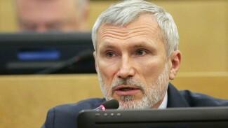 Воронежский депутат Госдумы назвал последствия падения рубля для экономики
