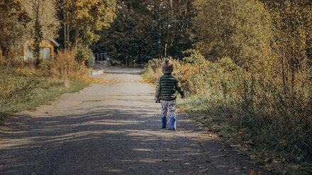 В Воронежской области ВАЗ сбил выбежавшего на дорогу 5-летнего мальчика