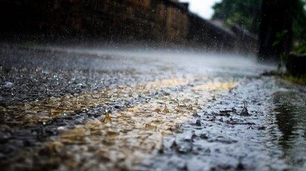 Новая рабочая неделя будет в Воронежской области пасмурной и дождливой