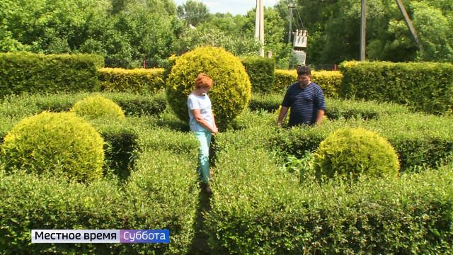 Воронежский агроном рассказал, как сделать живую изгородь
