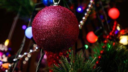 В Воронеже установили первую новогоднюю ёлку