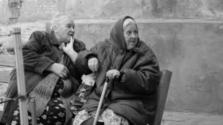 Воронежские филологи пояснили этимологию слова «судачить»
