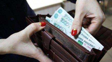 Чиновники сообщили о росте зарплат бюджетников в Воронежской области