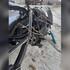 Появились фото последствий смертельного ДТП с пожаром под Воронежем