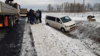 Под Воронежем семья с ребёнком и двумя собаками оказалась в дорожной западне