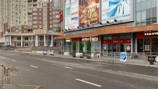 Популярные пешеходные переходы сохранят после жалоб воронежцев