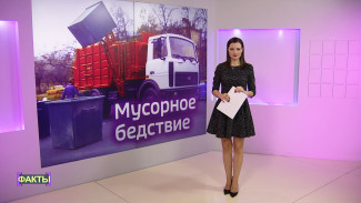 «Мёртвые души» и протесты. Какими скандалами запомнится мусорная реформа в Воронежской области